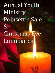 2015 Luminary & Poinsettia