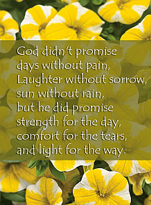 life-quote-god-promise