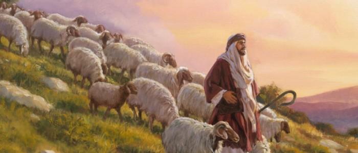 Shepherd and sheep gate